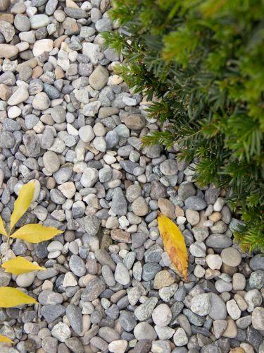 alpengrind 8 - 16 tuin